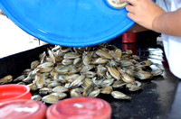 Cleaning the clams